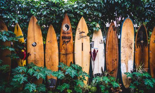 Wakesurfing – co powinniśmy wiedzieć na jego temat?